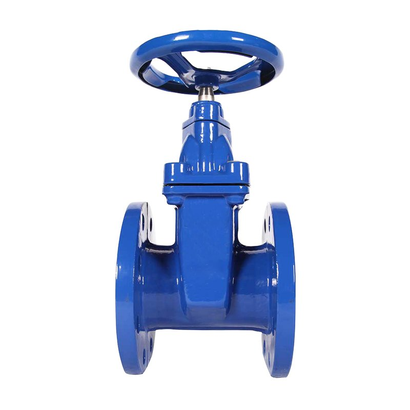 GOST-30ч39р-Resilient-Gate-Valve 1